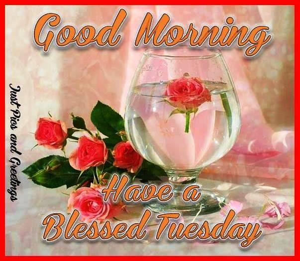 Good morning and have a blessed tuesday pictures photos and images