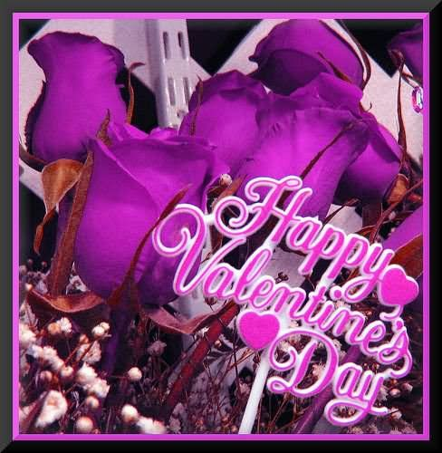 happy valentine's day purple roses pictures, photos, and images, Ideas