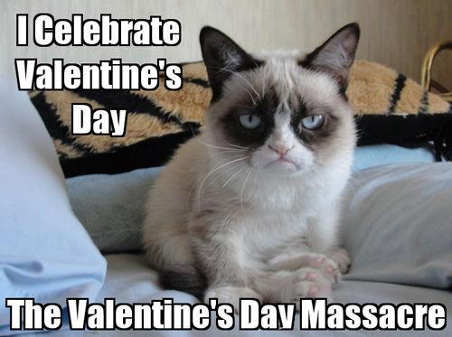 Topic des chats - Page 2 238915-The-Valentine-s-Day-Massacre