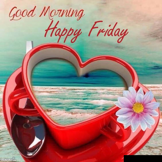 Beautiful Good Morning Happy Friday Image Quote