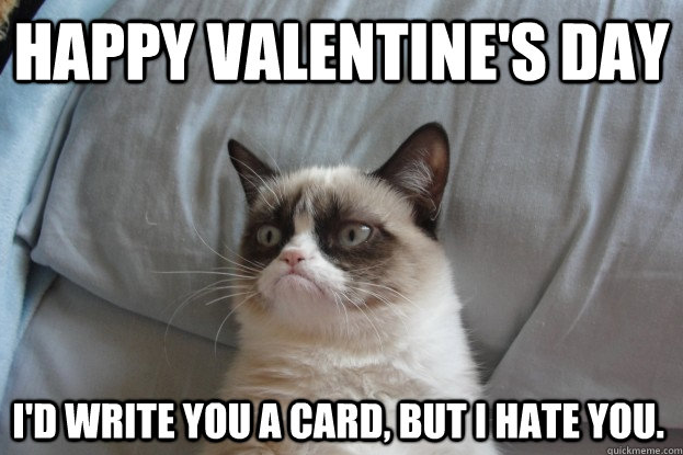 Happy Valentines Day Id Write You A Card But I Hate You – I Hate Valentines Day Cards