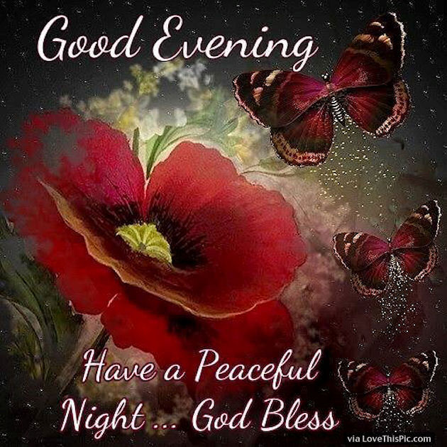Images Of Good Evening Quotes: Good Evening Have A Peaceful Night God Bless Pictures