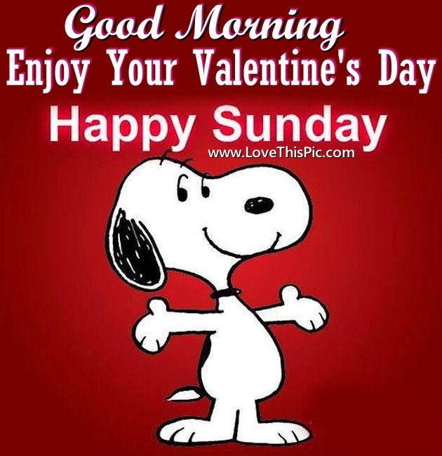 Happy Valentineu0027s Day Good Morning Image Quote