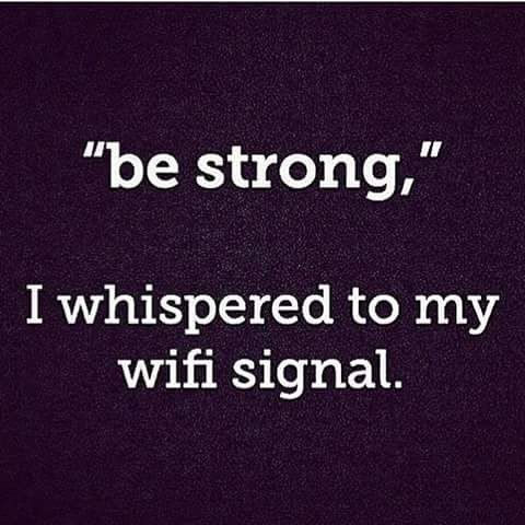 Be Strong, I Whispered To My Wifi Signal Pictures, Photos ...