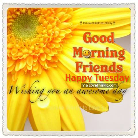 Good Morning Friends, Happy Tuesday, Wishing You An Awesome Day