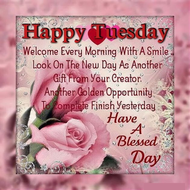 Happy Tuesday Have Blessed Day Inspirational Quote