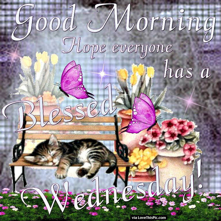 Good morning hope everyone has a blessed wednesday pictures photos