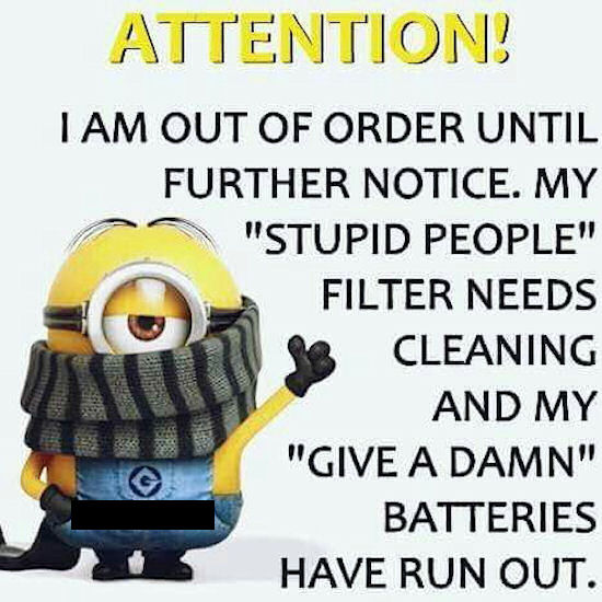 Stupid Minion Quotes: I Am Out Of Order My Stupid People Filter Needs Cleaning