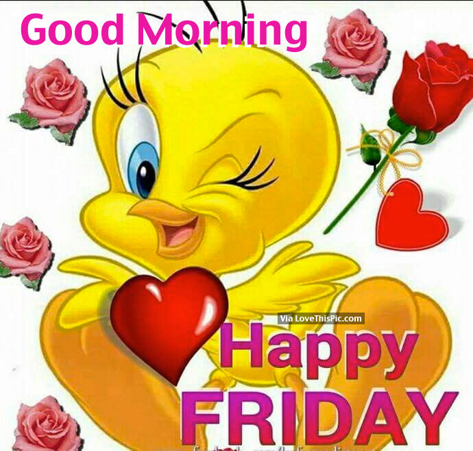 Good Morning My Love Happy Friday : Good morning happy friday pictures photos and images