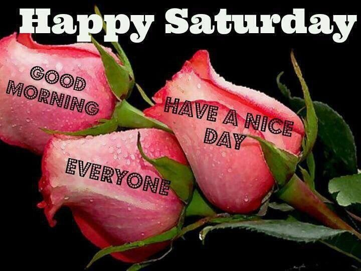 Good Morning Everyone Have Nice Day : Happy saturday good morning everyone have a nice day