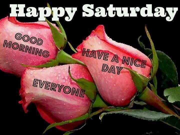 Good Morning Everyone Saturday : Happy saturday good morning everyone have a nice day