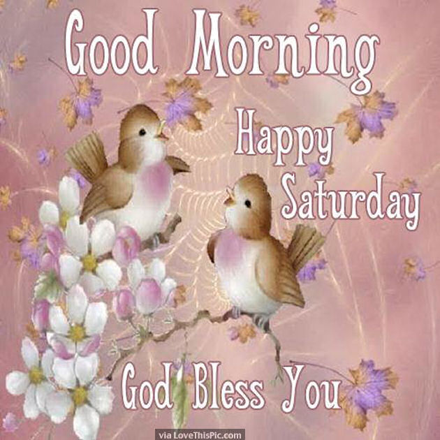 Good Morning Happy Saturday God Bless You Quote Image