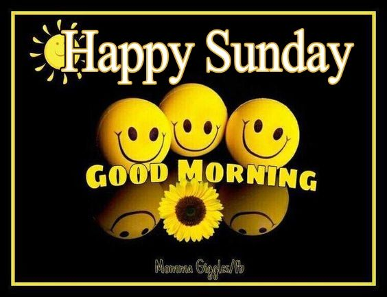 Happy Sunday Good Morning Pictures Photos And Images For