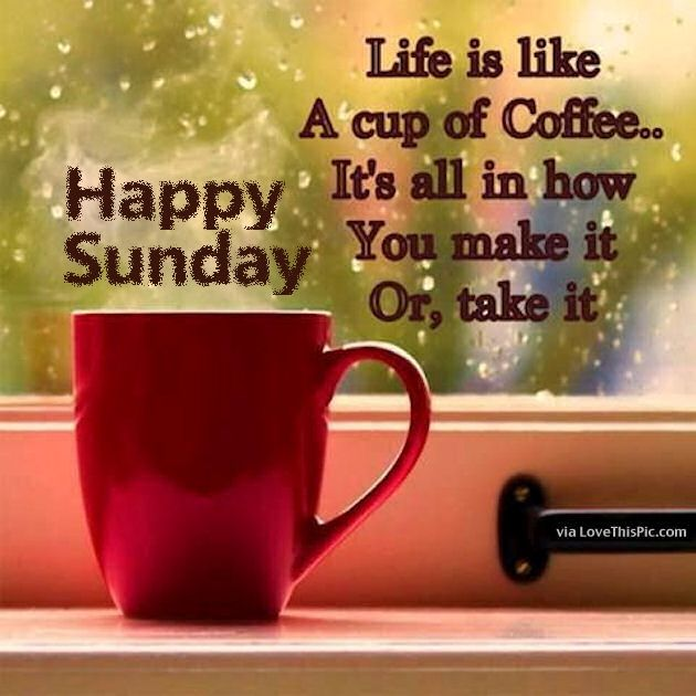 happy sunday life is like a cup of coffee pictures photos and
