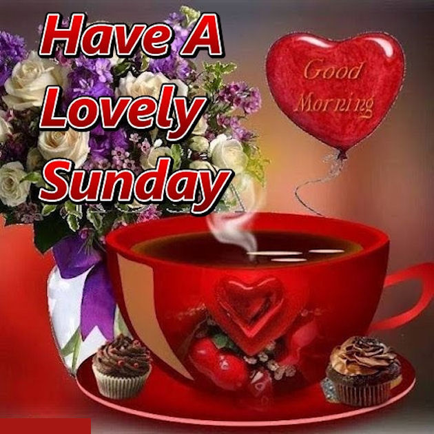Good Morning Sunday For Her : Have a great sunday quotes imgkid the image