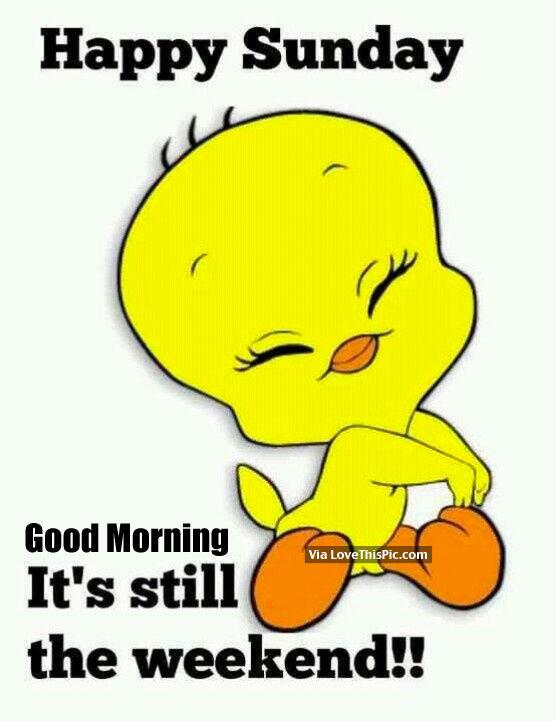 240828-Happy-Sunday-Good-Morning-Its-Sti