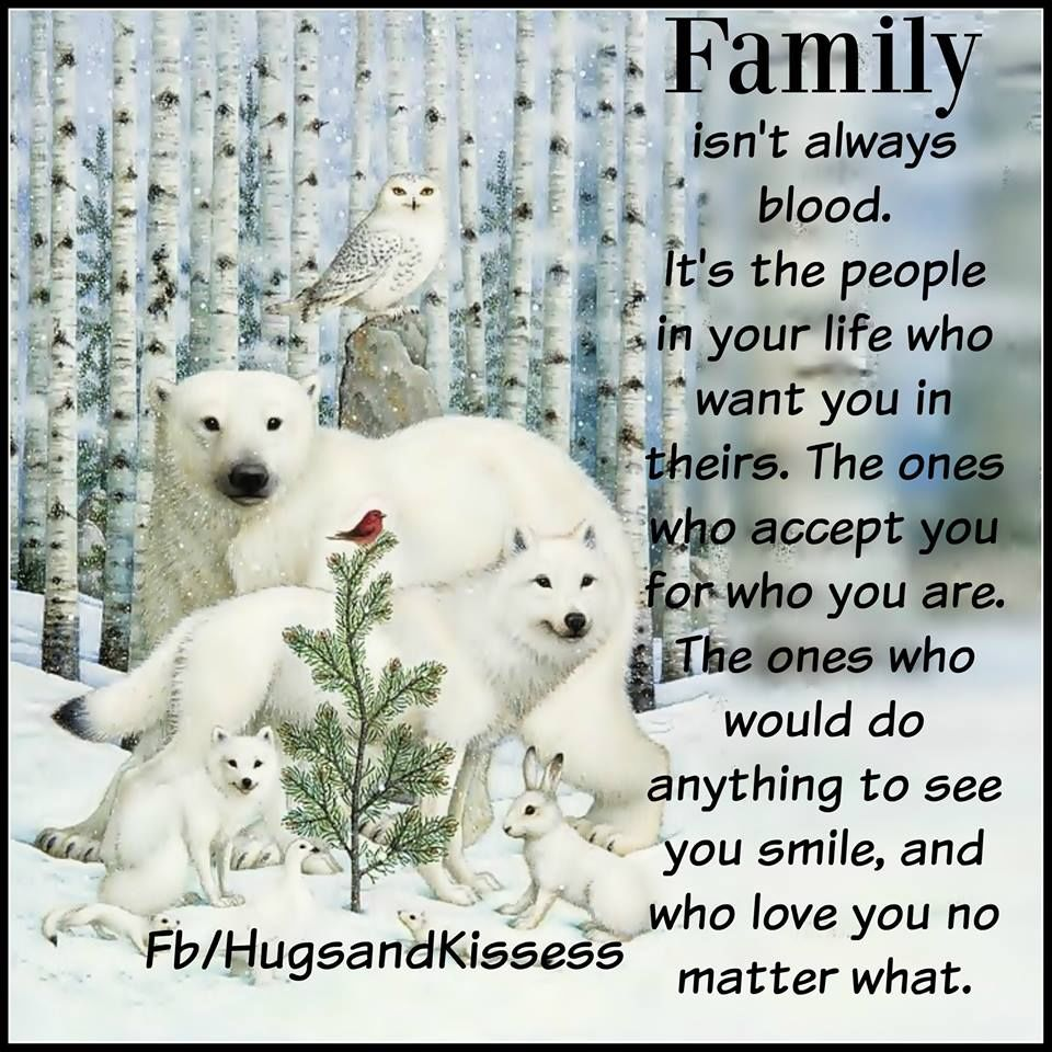 Family Isn't Always Blood Its The People In Your Life Who