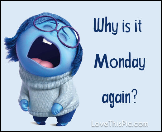 Why Is It Monday Again Pictures Photos And Images For