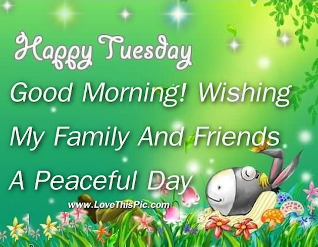Happy Tuesday Good Morning For Family And Friends