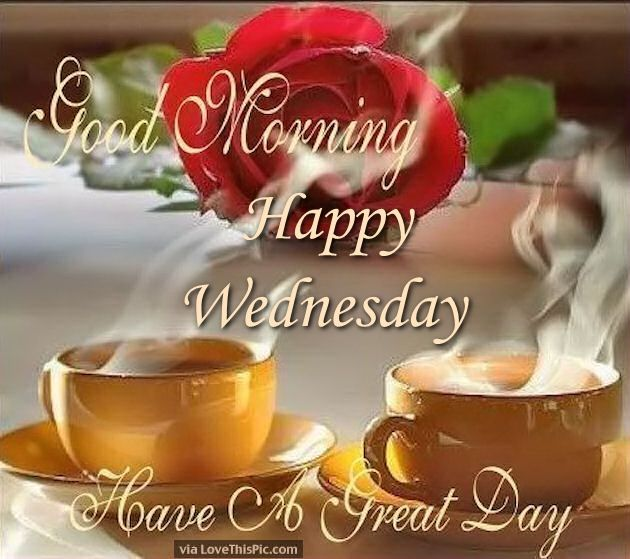 Good Morning Happy Wednesday Have A Blooming Great Day
