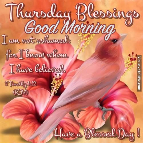 Good Morning Quotes Blessings: Thursday Blessings, Good Morning Have A Blessed Day