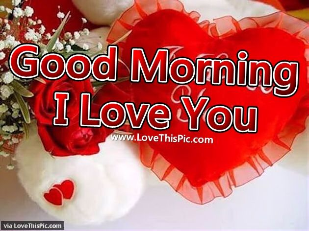 Good morning i love you pictures photos and images for facebook good morning i love you voltagebd Images