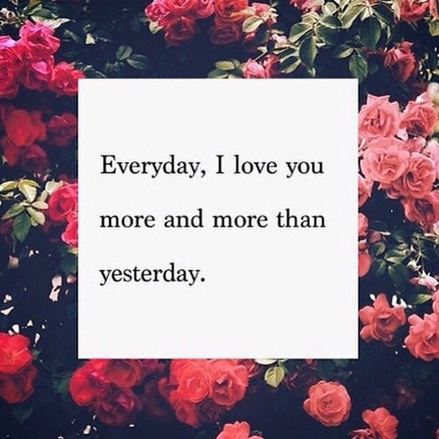 I Love You More And More Everyday Tumblr Quotes : Everyday, I Love You More And More Than Yesterday Pictures, Photos ...