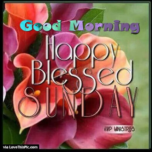 Good Morning Happy Palm Sunday : Good morning happy blessed sunday pictures photos and