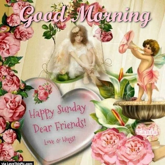 Good Morning Happy Sunday My Friend : Good morning happy sunday dear friends pictures photos