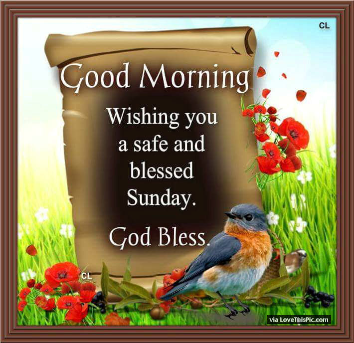 Good Morning Wishing You A Safe And Blessed Sunday Pictures ...
