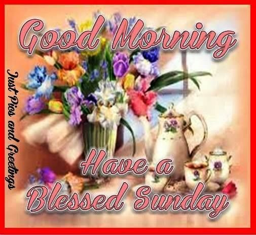 Good Morning Sunday Flowers Images : Good morning sunday quote with flowers pictures photos