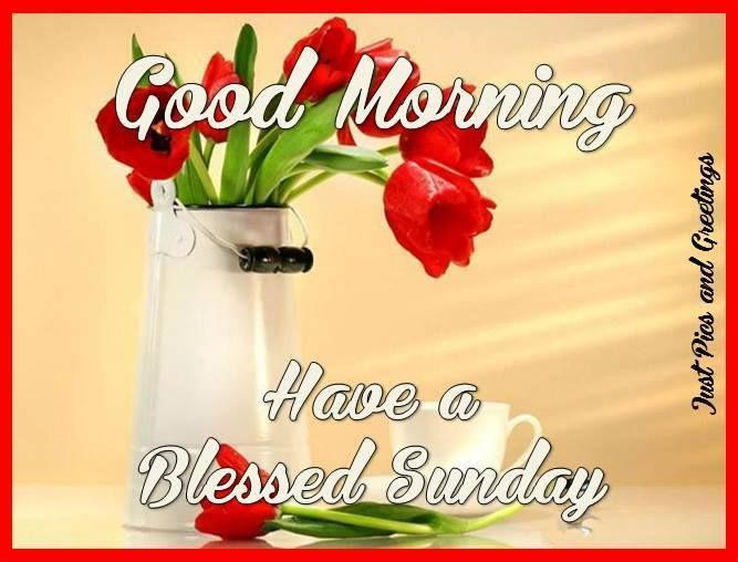 Good Morning And Have A Blessed Sunday Pictures, Photos