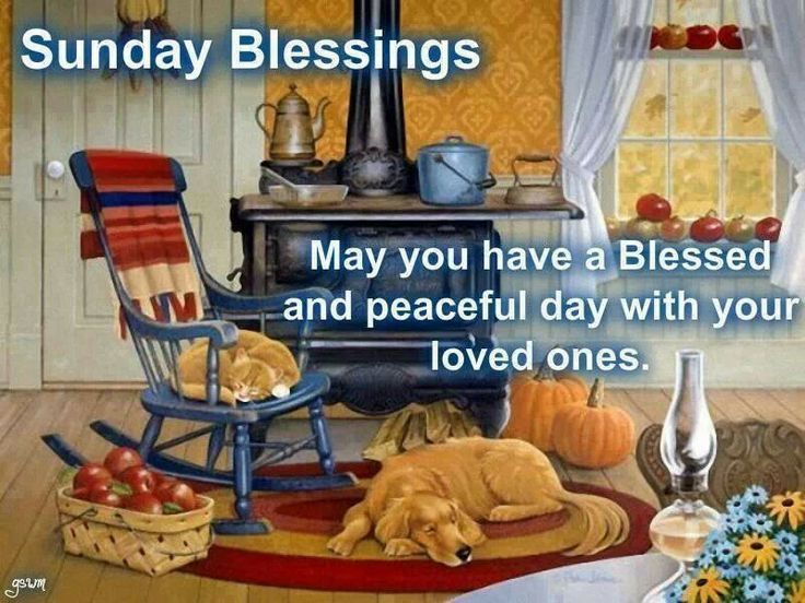 Sunday Blessings May You Have A Blessed And Peaceful Day