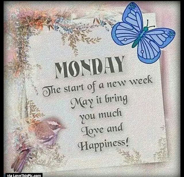 Monday The Start Of A New Week Pictures Photos And