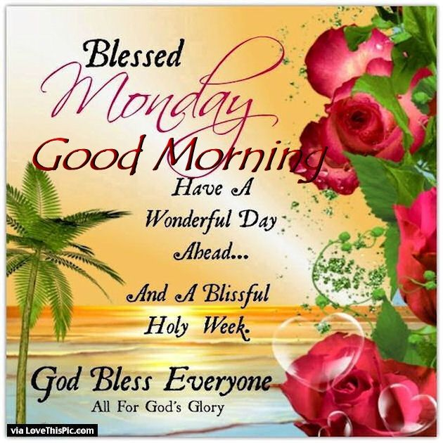 blessed monday good morning pictures photos and images