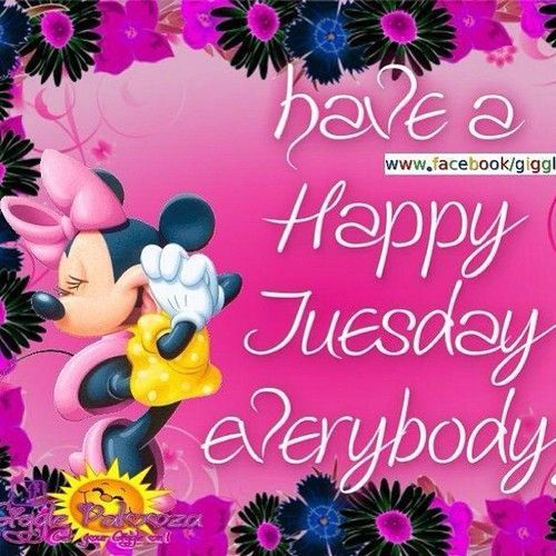 Have A Happy Tuesday Everyone Pictures, Photos, and Images