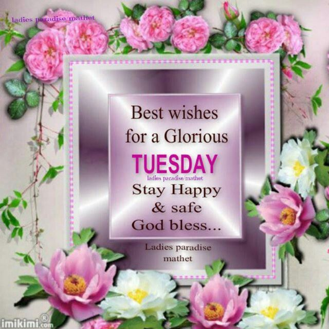 Image result for tuesday wishes