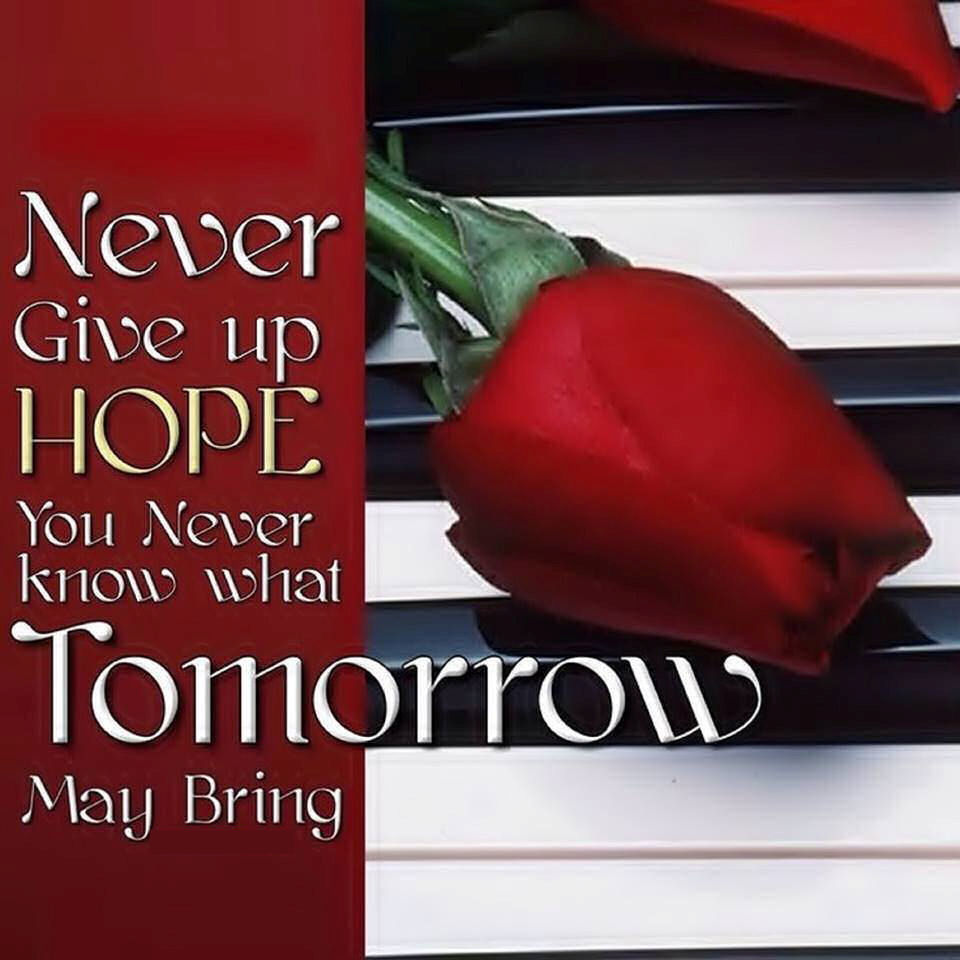 Never Give Up Hope You Never Know What Tomorrow Will Bring