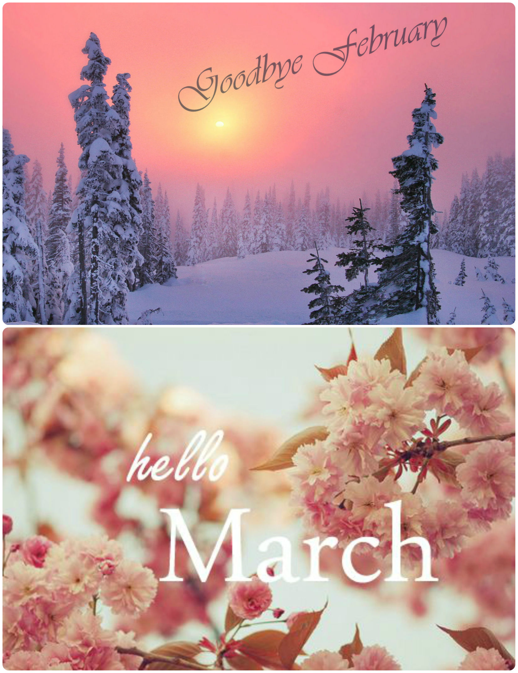 Goodbye February Hello March Pictures, Photos, and Images