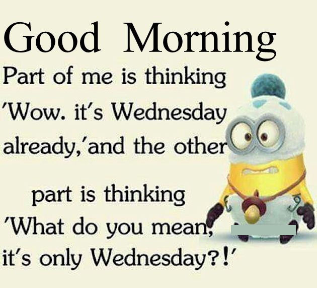 Good Morning Funny Minion Wednesday Quote Pictures, Photos ...