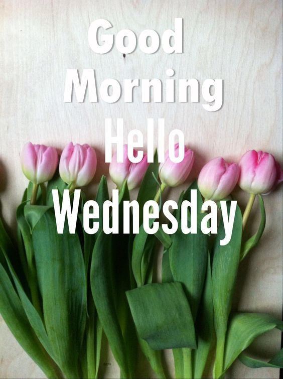 Good Morning Hello Wednesday Pictures Photos And Images