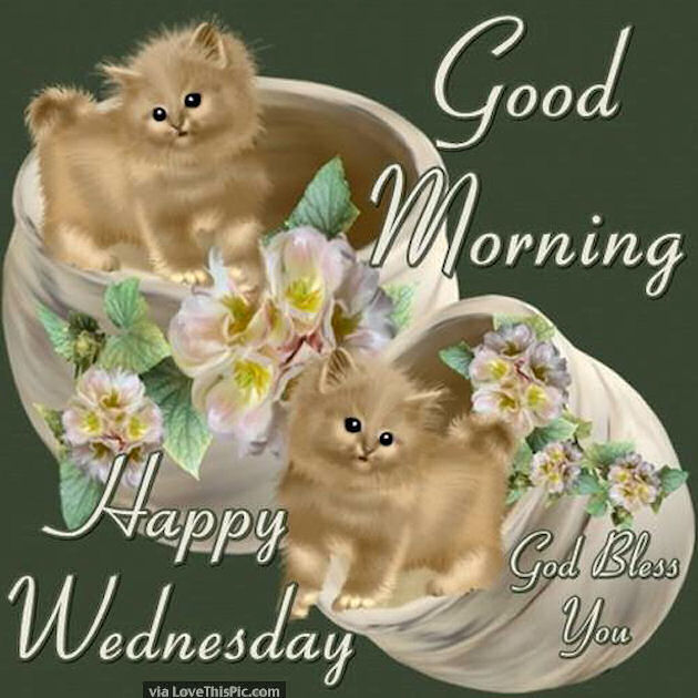 Image result for cute happy wednesday pictures