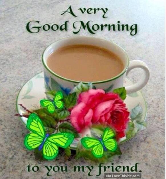 http://www.lovethispic.com/uploaded_images/242741-A-Very-Good-Morning-To-You-My-Friend.jpg