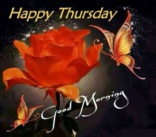 Happy Thursday Good Morning Quote With Roses And Butterflies