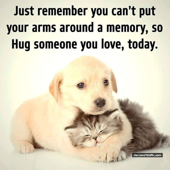 Captivating Just Remember You Cant Put Your Arms Around A Memory So Make Sure You Hug  Someone You Love Today