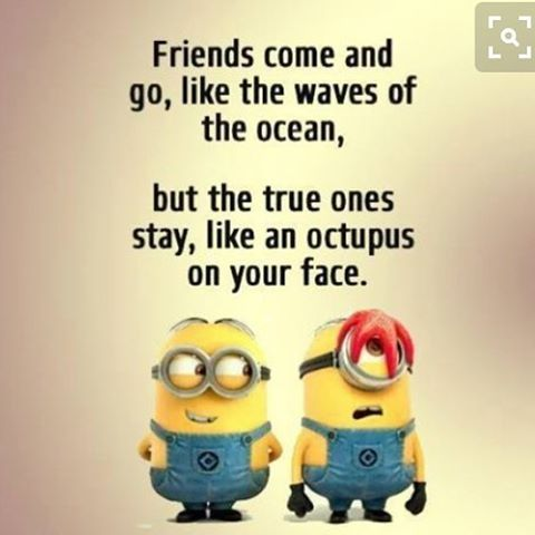 Friends Come And Go, Like The Waves Of The Ocean Pictures ...