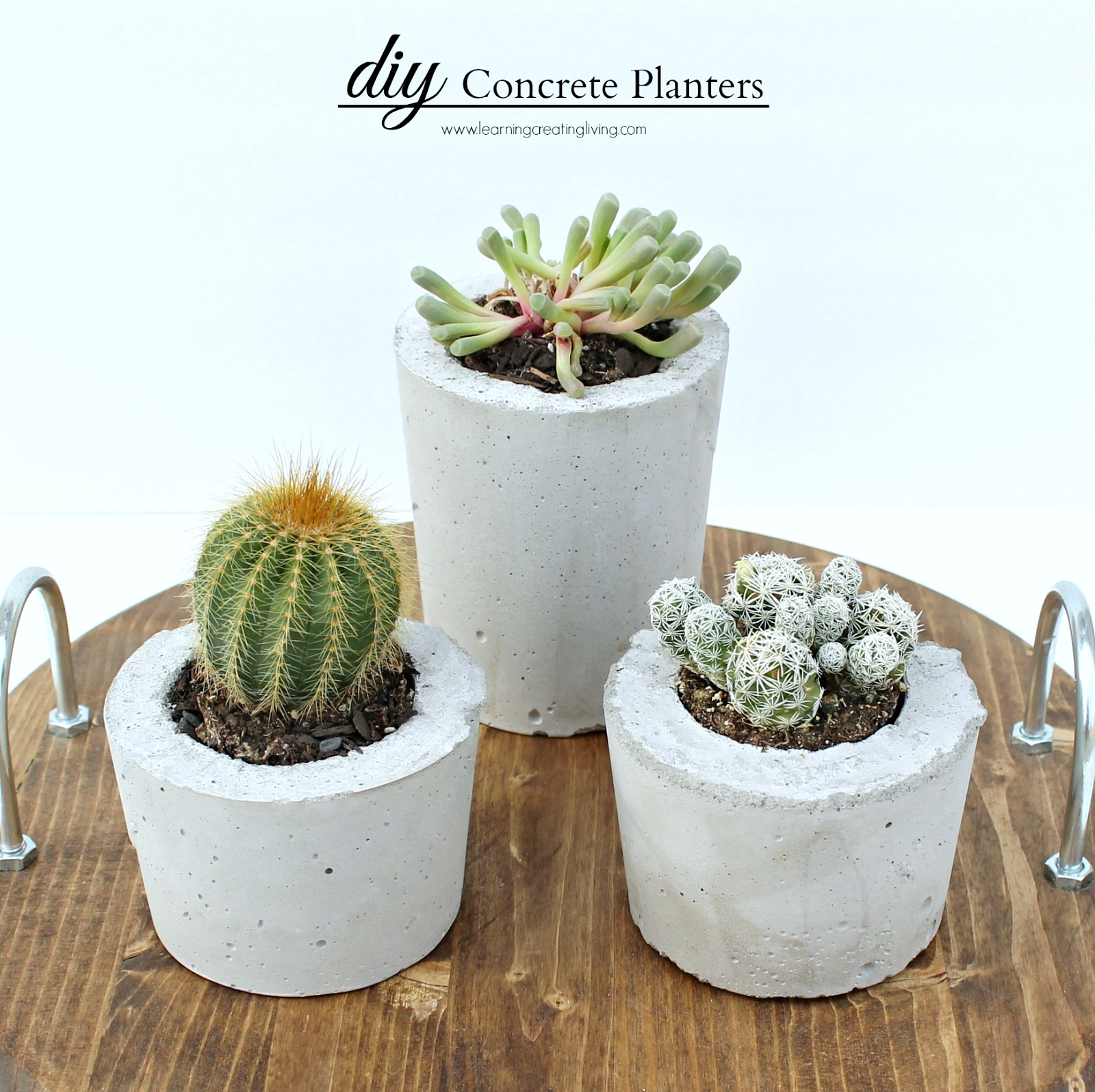Concrete Planters Pictures, Photos, and Images for Facebook ...