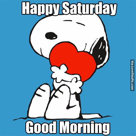 Good Morning Saturday Text : Happy saturday good morning pictures photos and images