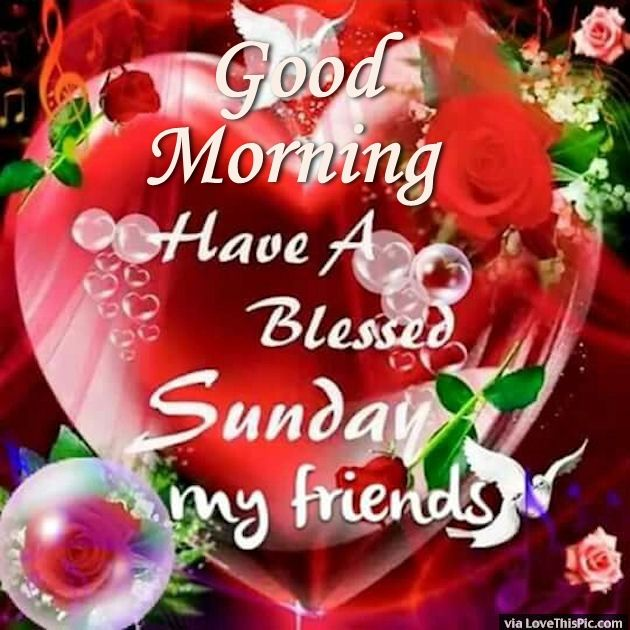 Awesome Good Morning Have A Blessed Sunday My Friends