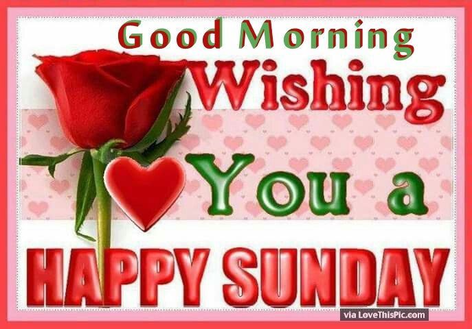 Happy sunday morning greetings picture gallery good morning wishing you a happy sunday pictures photos and images for facebook m4hsunfo